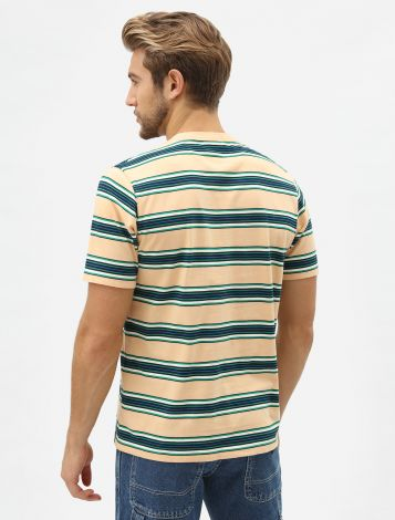 Lithia Springs Men's Striped T-Shirt