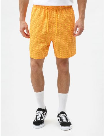 "Cave Point Men's 6"" Shorts"