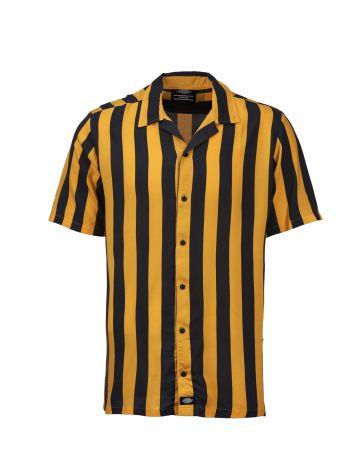 Dickies Womens Roslyn Shirt